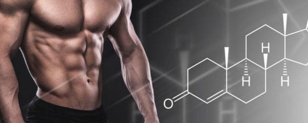 augmenter votre taux de testostérone